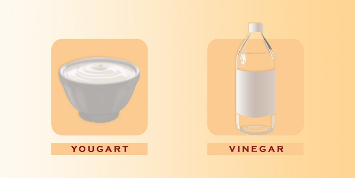 yougart-vinegar