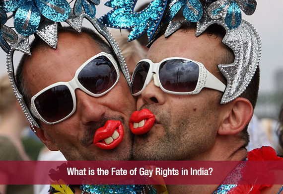 Essay on gay rights in india