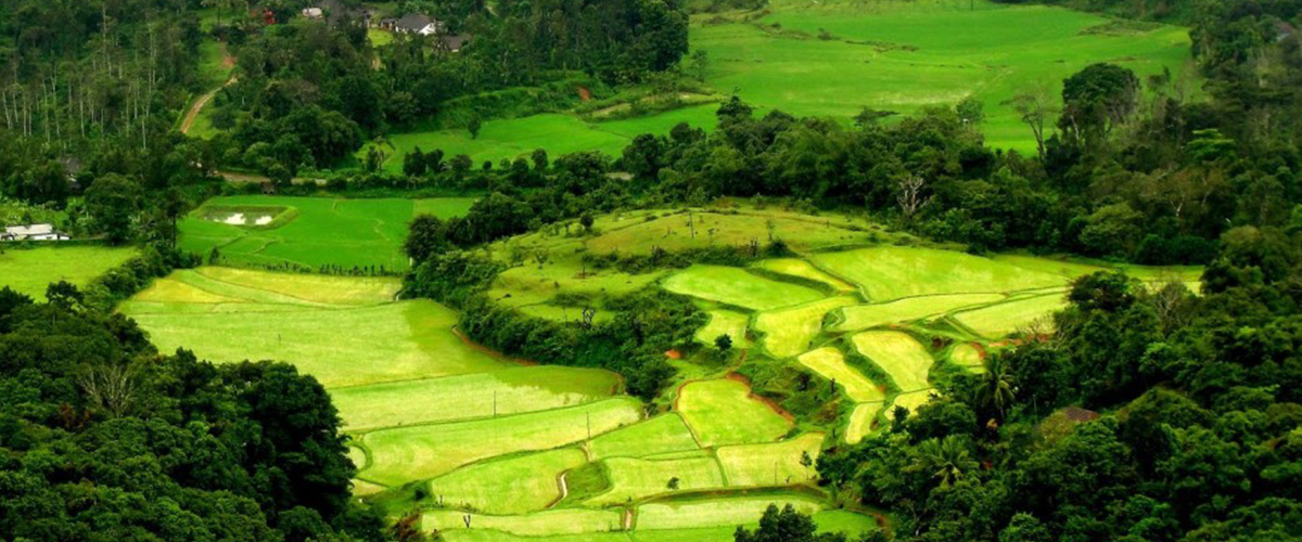 Coorg (Kodagu) – Must Visit Places In India