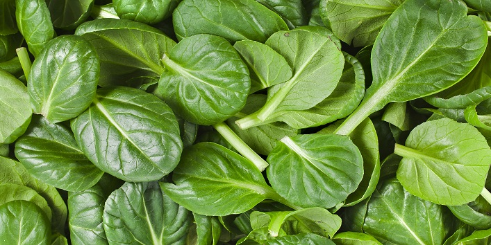 Calcium Rich Foods7