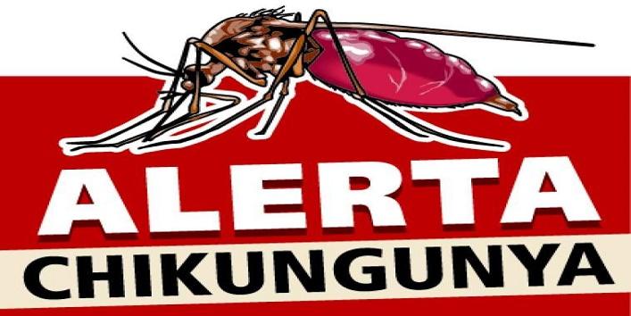 Dengue and Chikungunya1