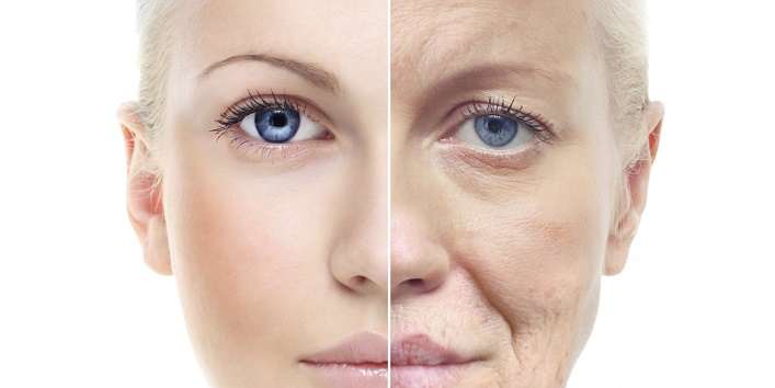 Slows down the process of aging