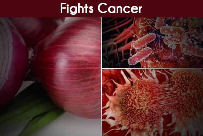 Fights Cancer